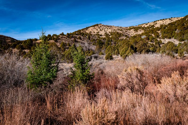 Idaho-pocatello-cherry-hills-nature-area