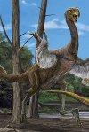Gigantoraptor140607_2