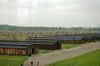 Birkenau17